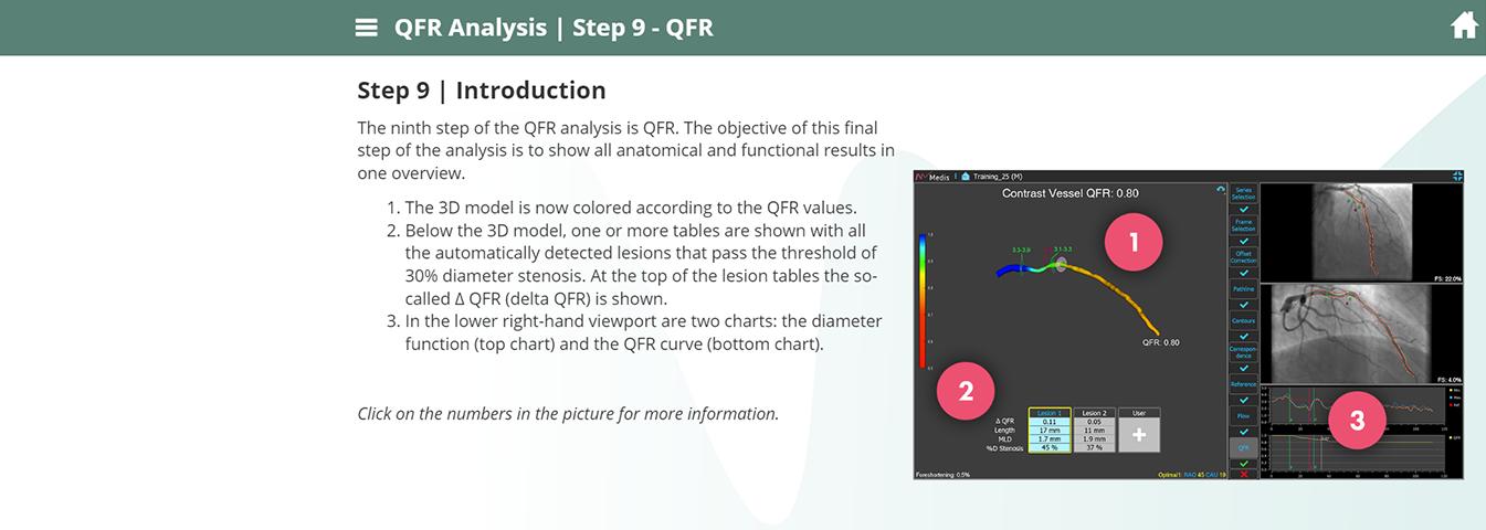 E-training QFR® Analysis