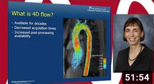 MR webinar 4D flow in 3D lab with Dr. Rigsby